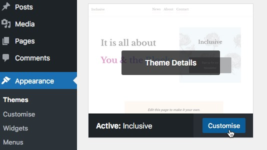 Click the Customize button theme-customise.jpg