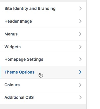 Click Theme Options theme-options.jpg
